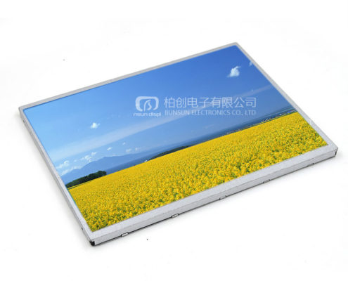 10 Inch TFT LCD Display